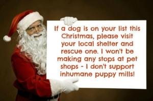 what santa said