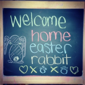 welcome home easter rabbit
