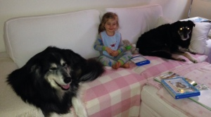 crowded couch