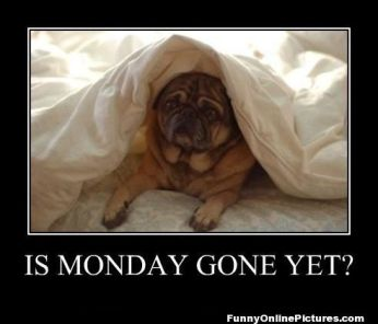 monday gone yet