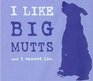 I like big mutts and I cannot lie