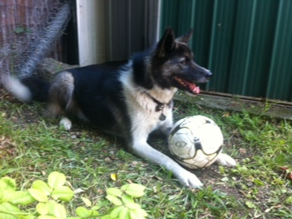 Miles soccer