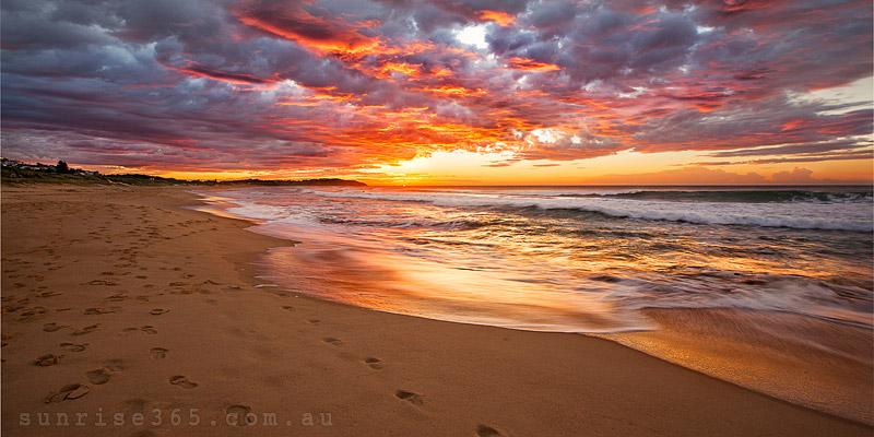 sunrise 365 dot com