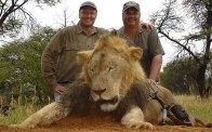 palmer & lion