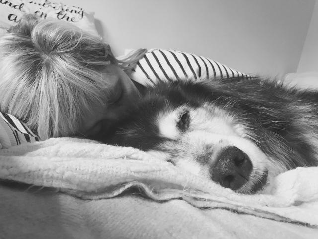 comfort creature.jpg